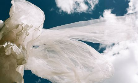 Wedding Dress Blows in the Wind
