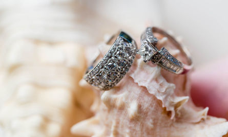 Wedding Rings on seashells