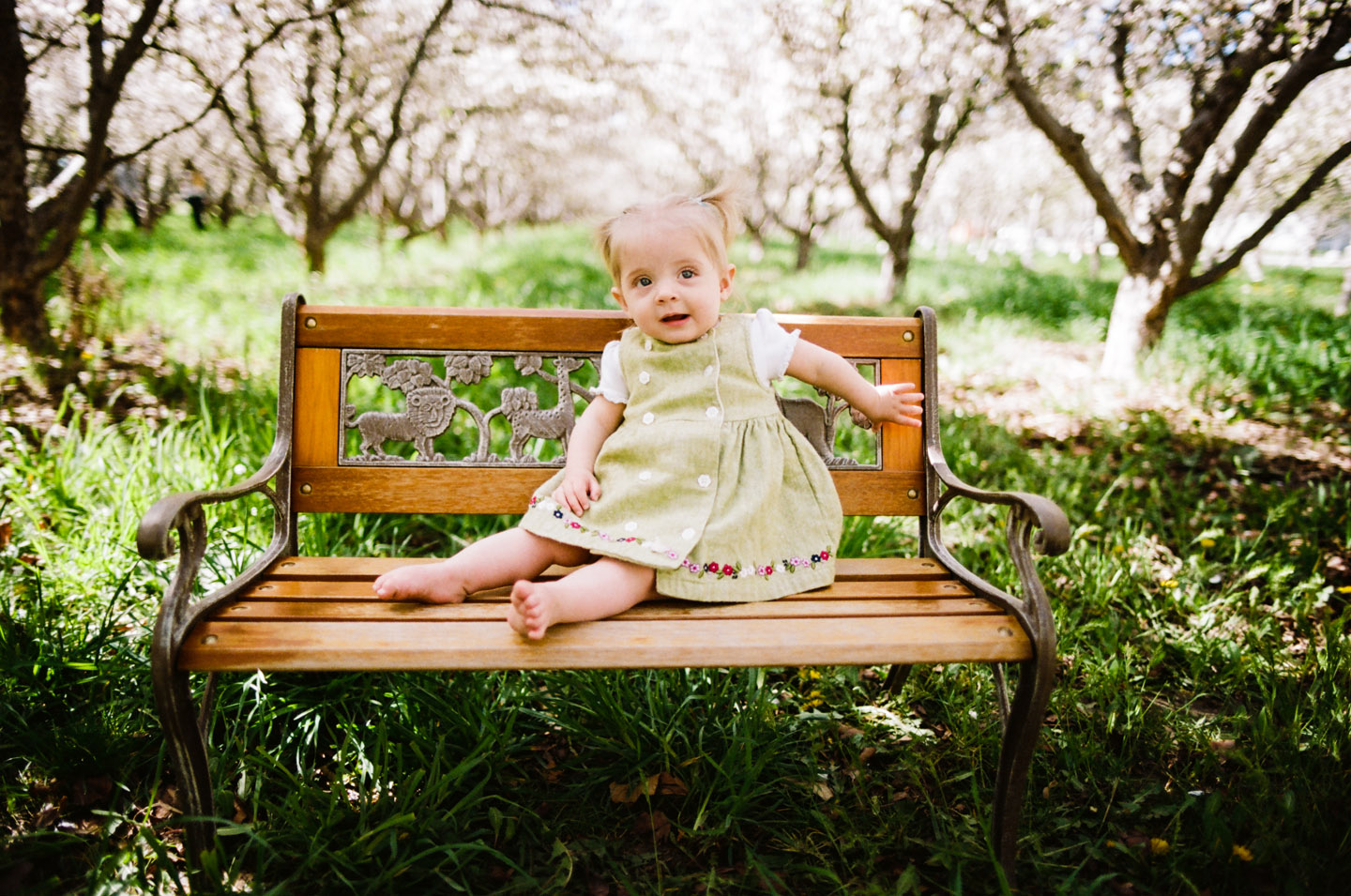 baby on a garden bench in the orchard
