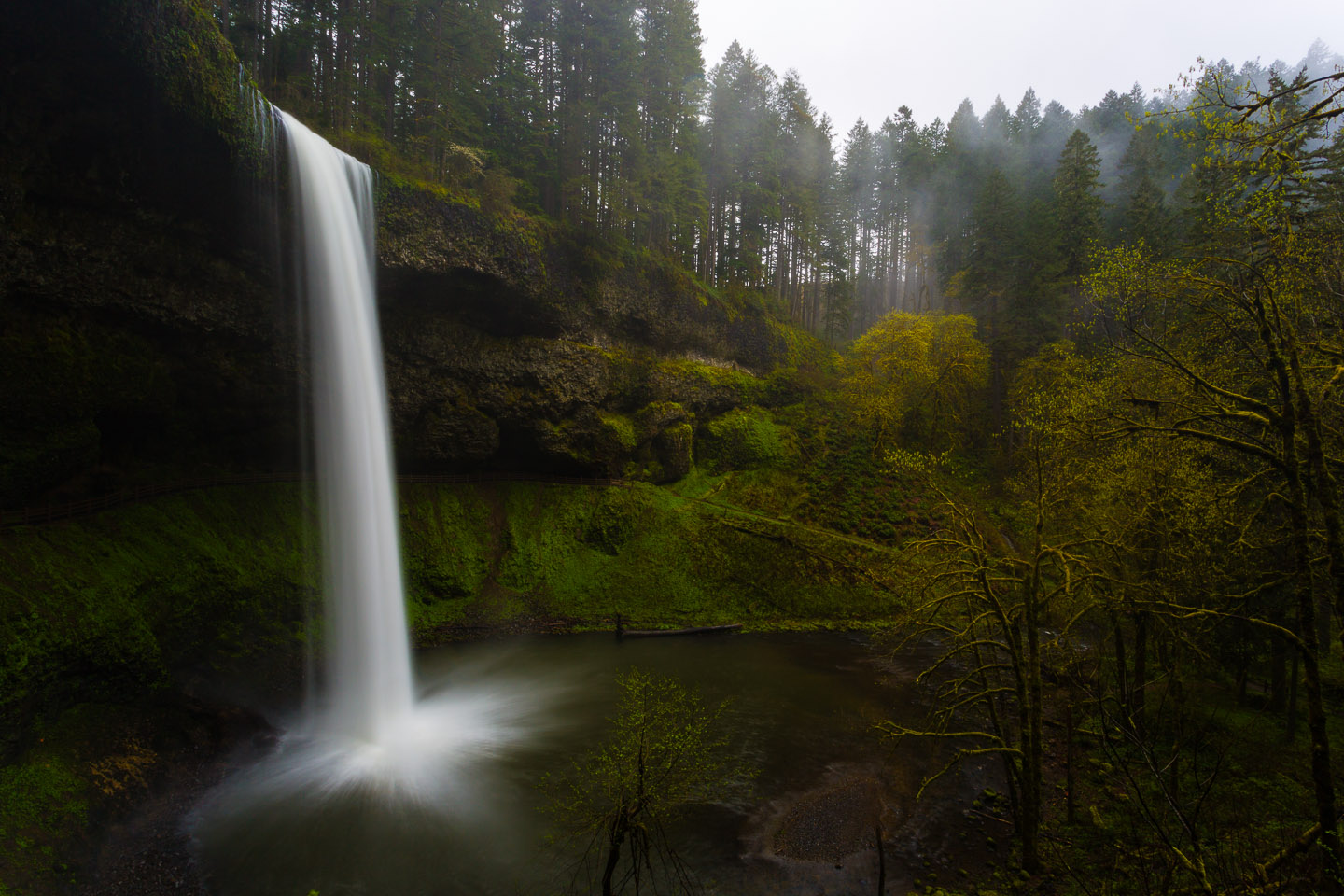 Gorgeous Waterfall in Silver Falls State Park in Oregon