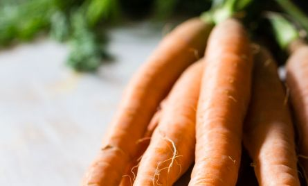 Fresh Carrots from the Farmers Market