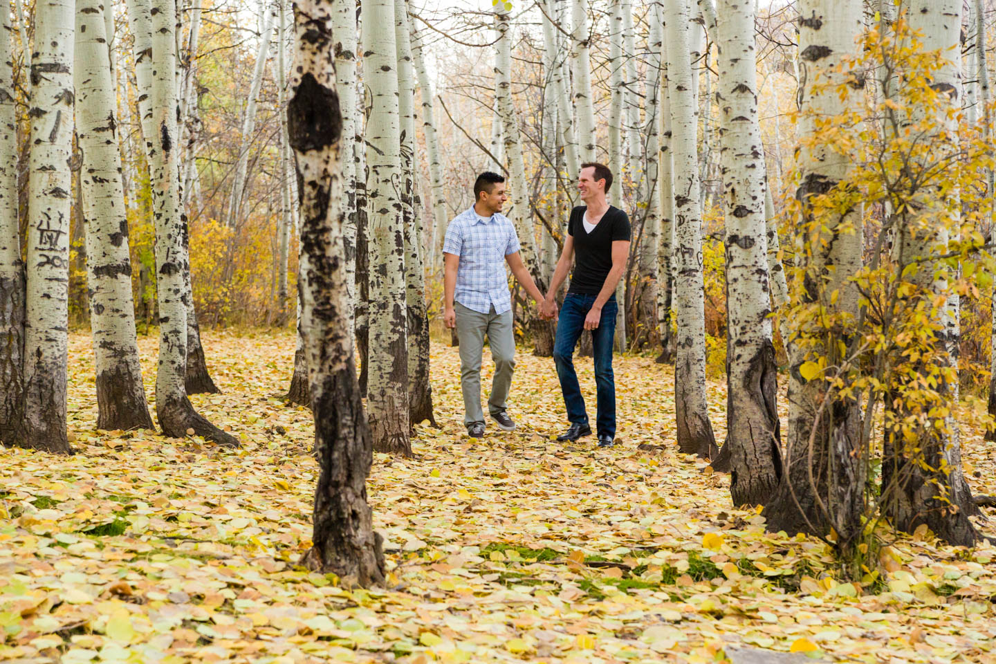 Walking through an aspen grove for engagement photos