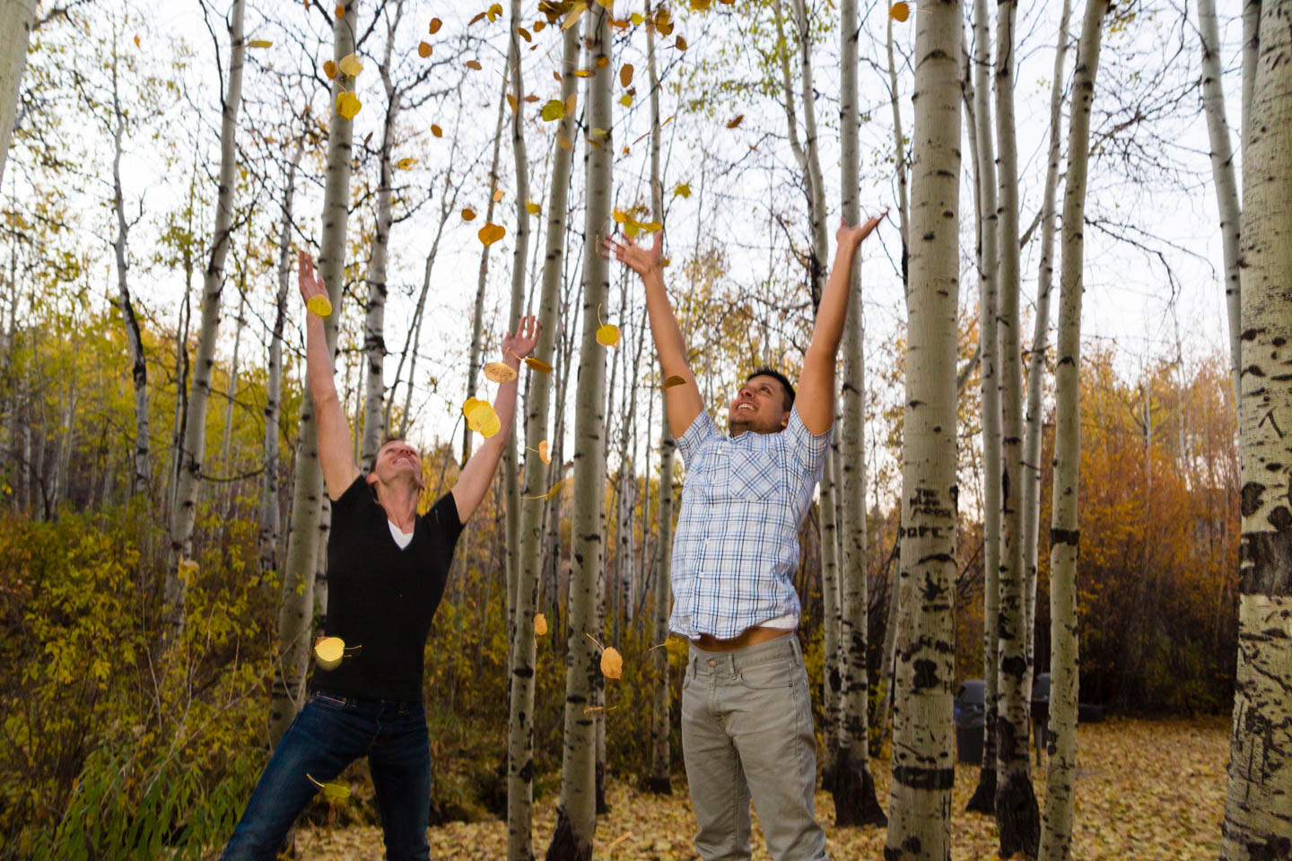 Aspen tree grove and engagement photos