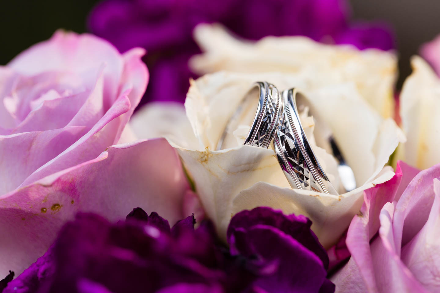The wedding rings in flowers