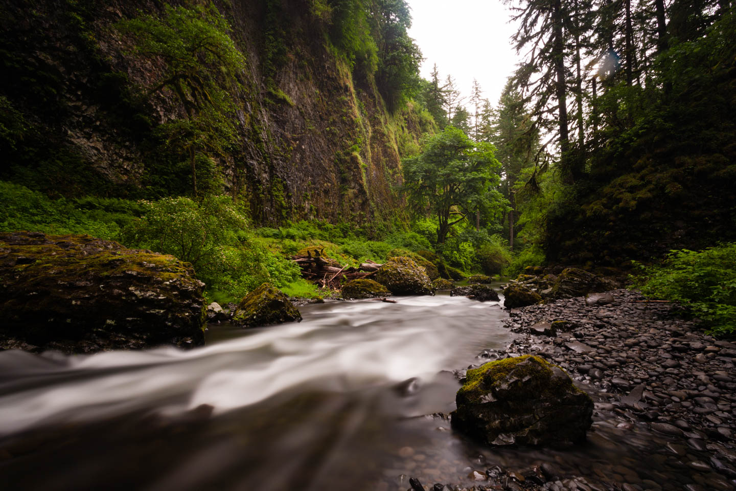 River by Abiqua Falls