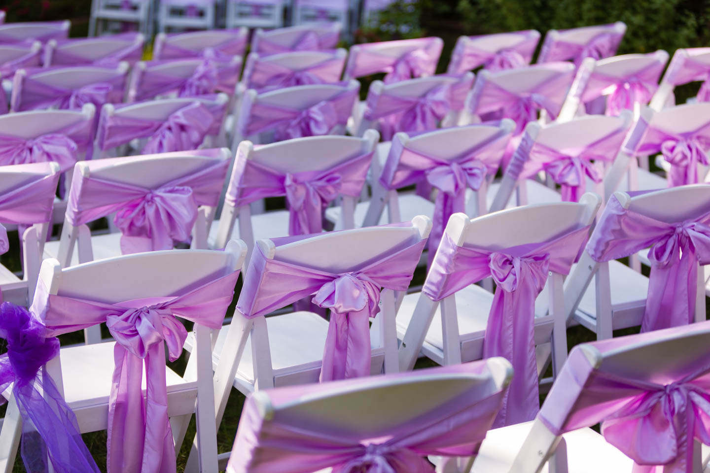 Wedding chairs decorated with lavender bows