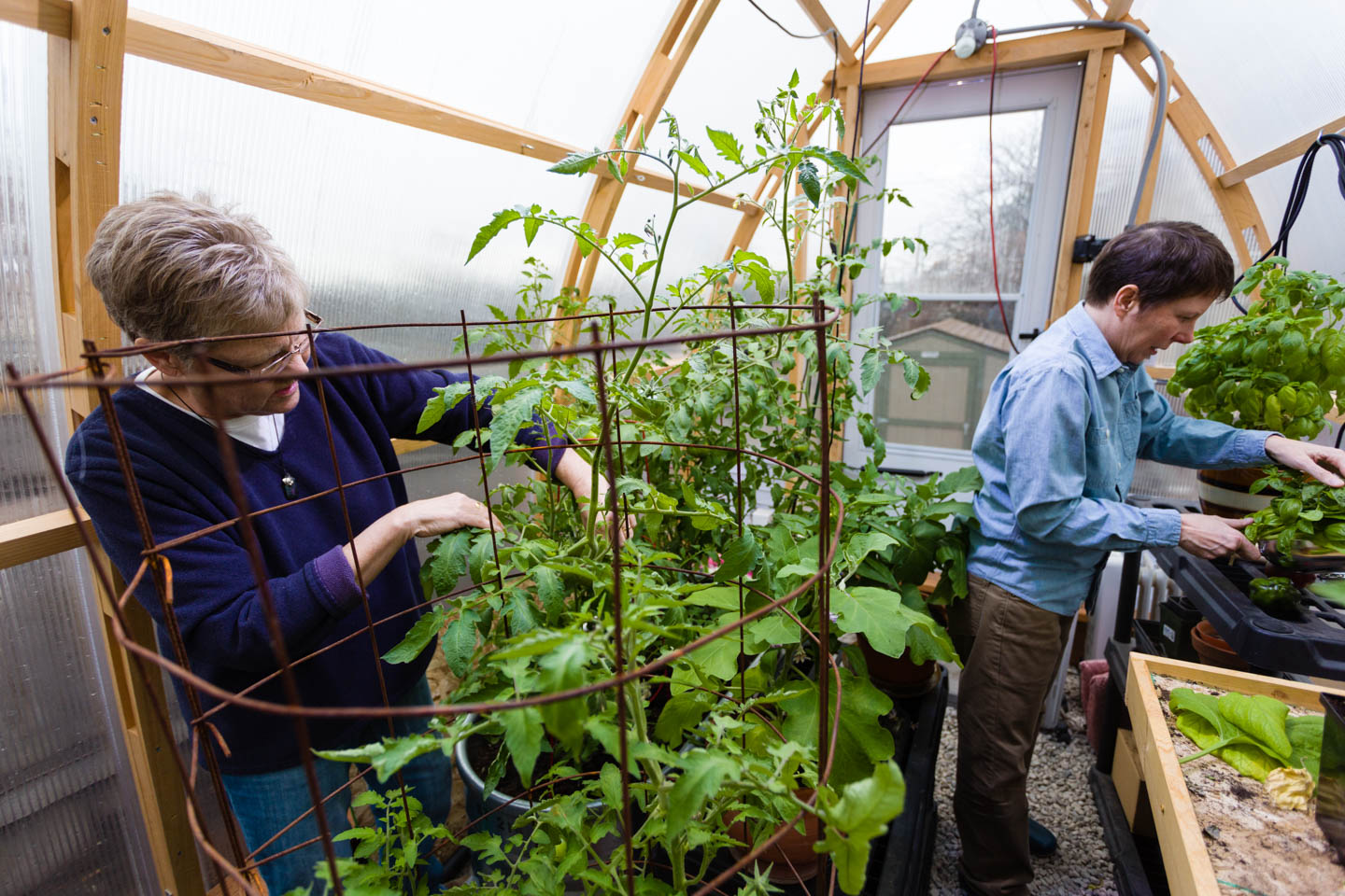 Kody Partridge and Laurie Wood work in their greenhouse