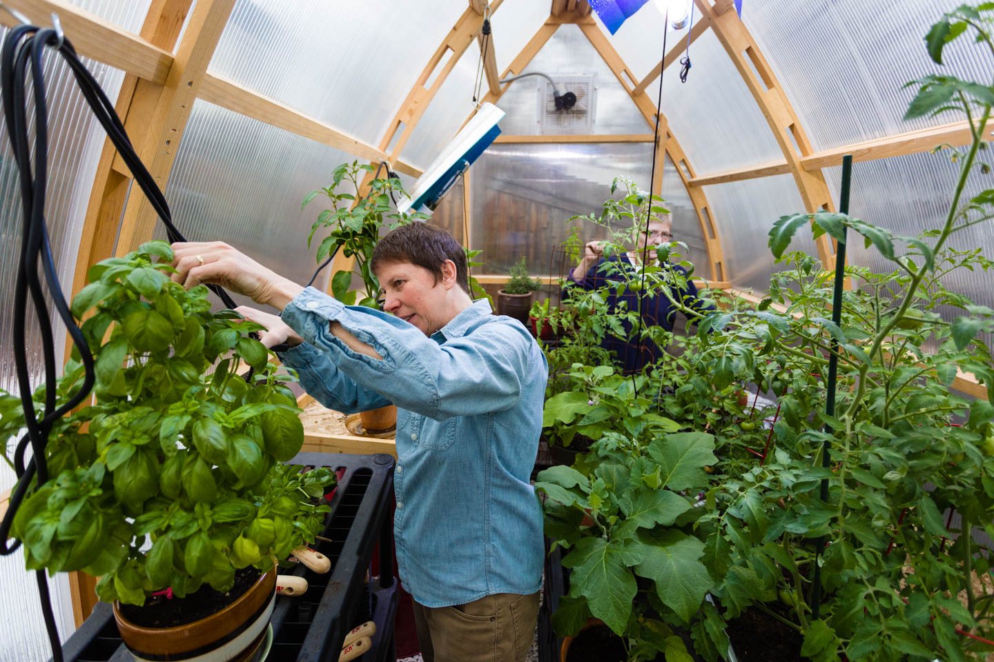 Kody Partridge works in the greenhouse