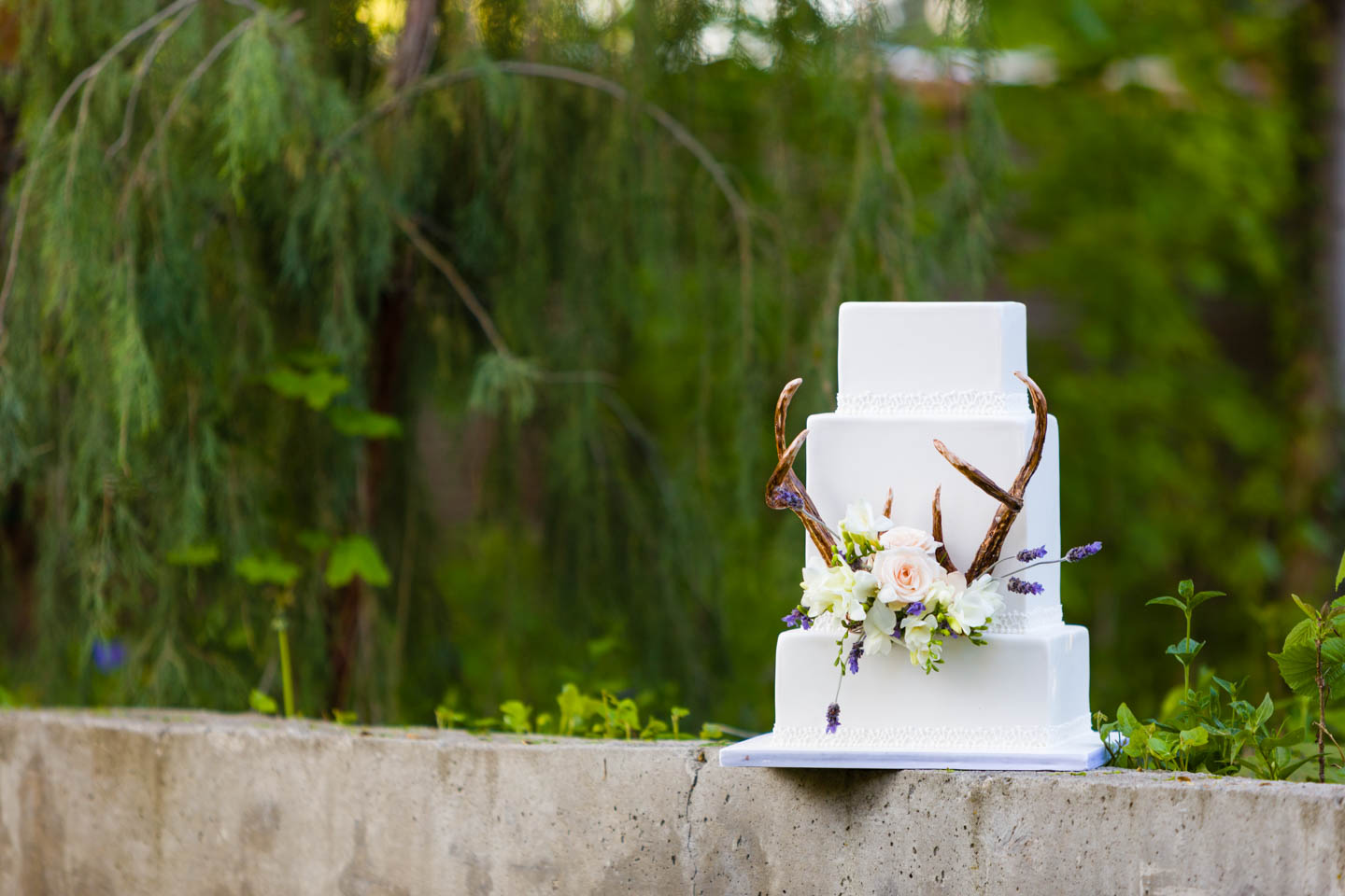 Nature themed wedding cake with antlers