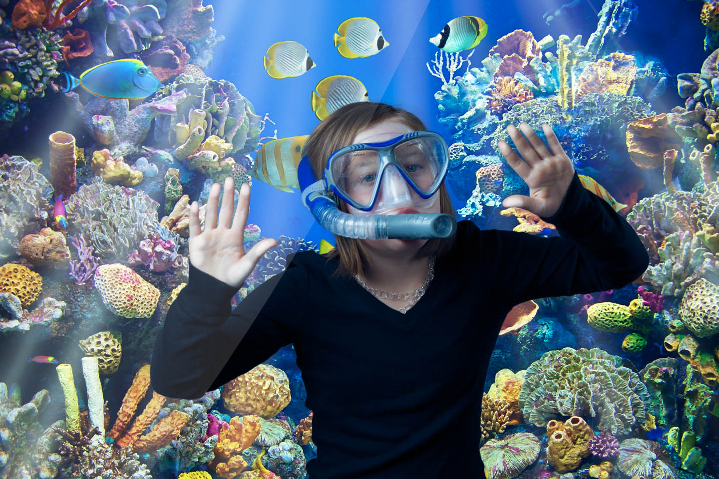 Photoshopped into an aquarium