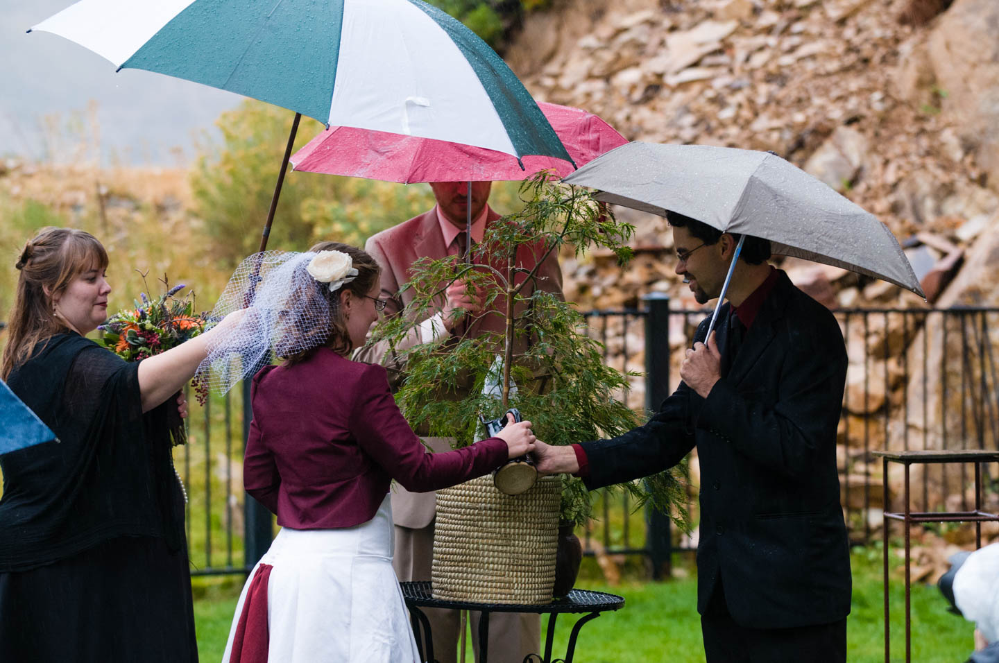 Bride and groom plant a tree in the rain