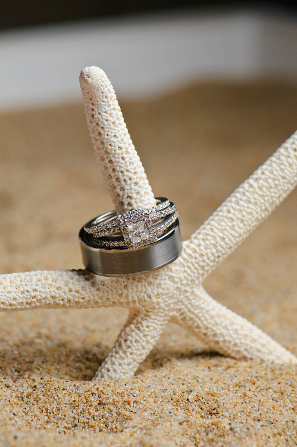Wedding rings on a starfish. The them was beach!