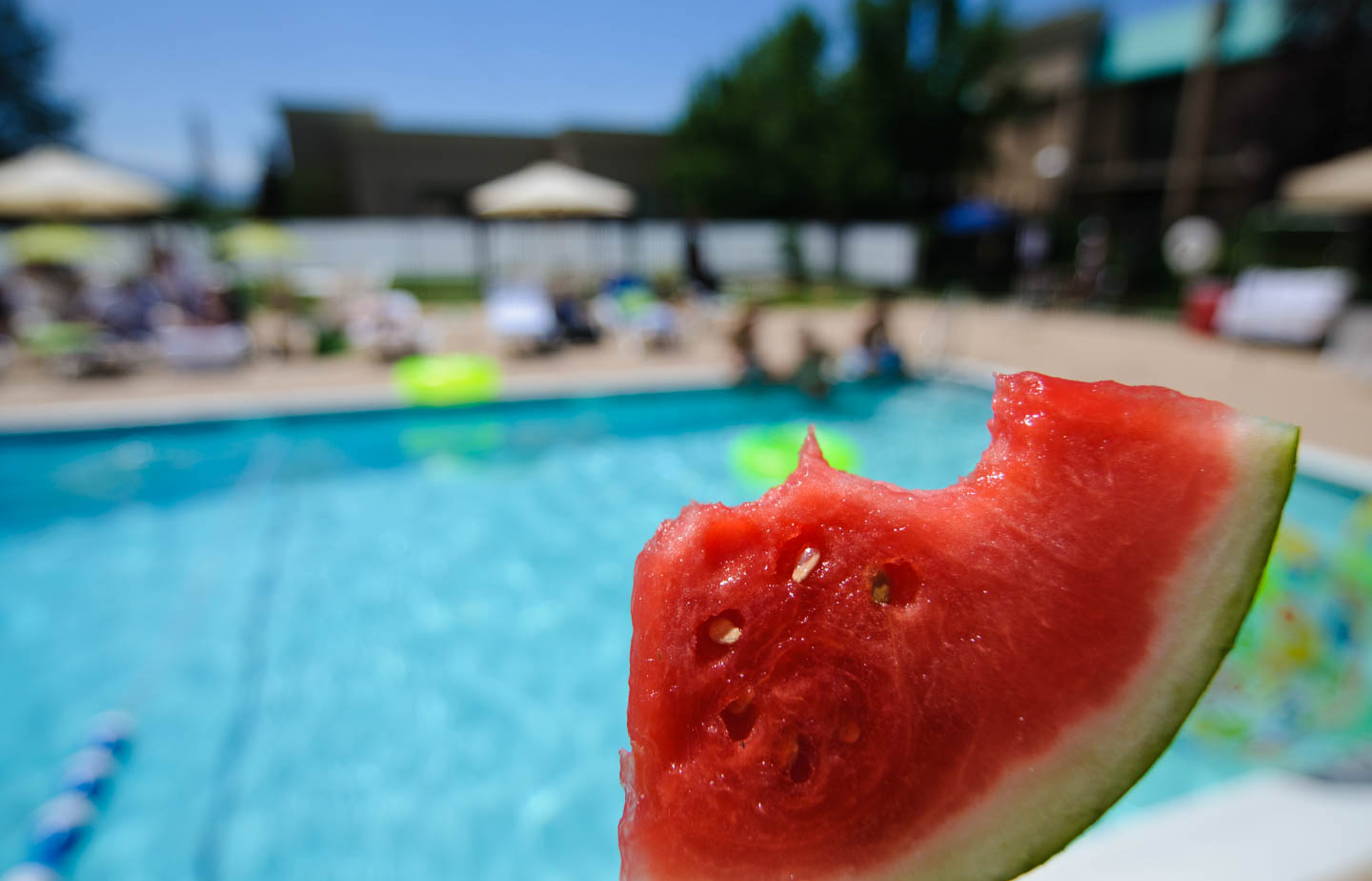 Watermelon and the pool party