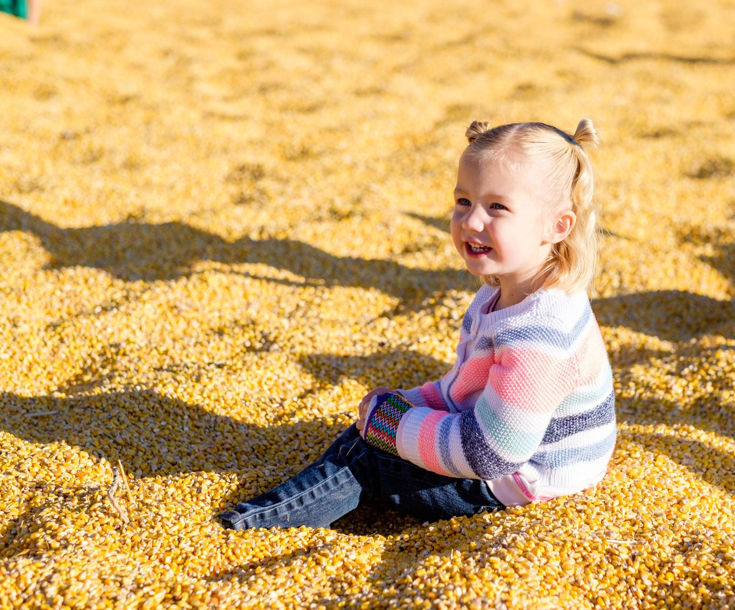 Playing in the corn