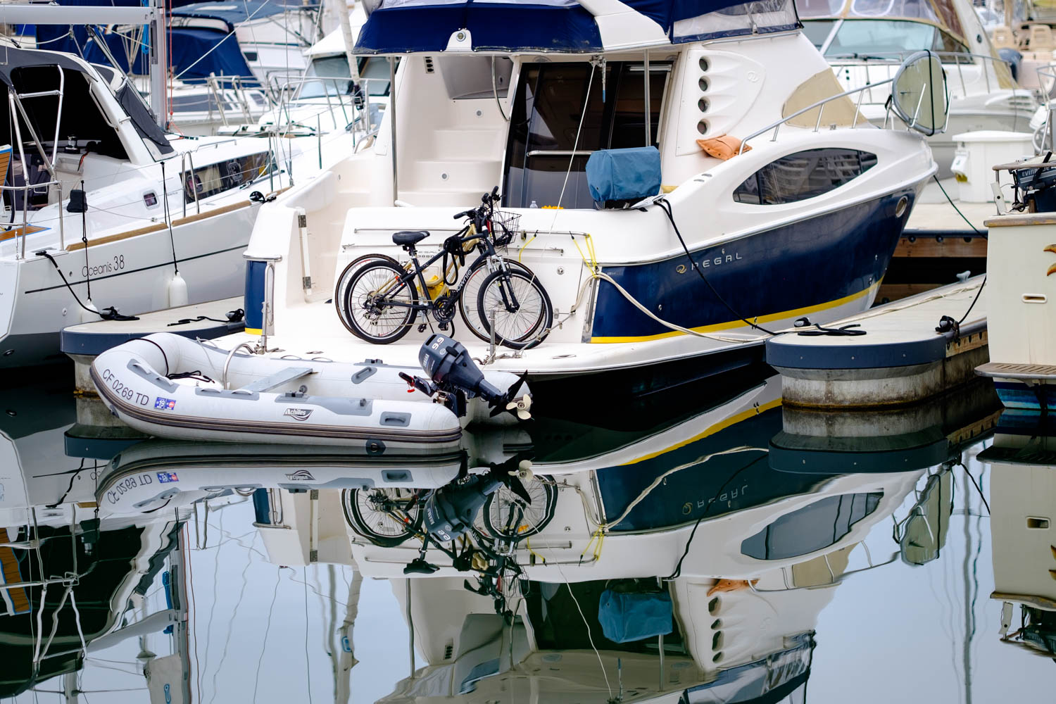 Cause you need bikes on the ocean
