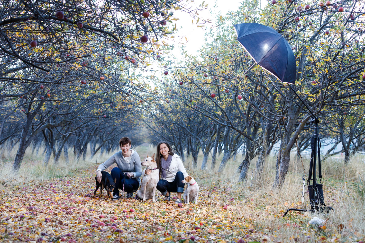 Behind the scenes of the orchard shoot